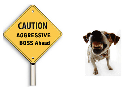 Are You Dealing With The Tyranny Of An Aggressive Boss