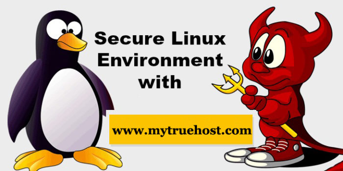 Secure Linux Server – How Can A Web Server Be Secured Against Hacker Attacks?