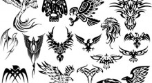 Precautions To Take While Making Tattoos- Before And After