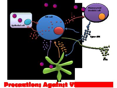 Precautions Against Viral Diseases