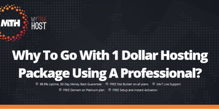 Why To Go With 1 Dollar Hosting Package Using A Professional?