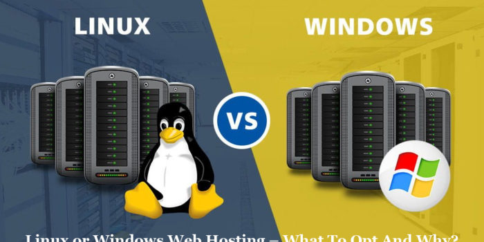 Linux or Windows Web Hosting – What To Opt And Why?